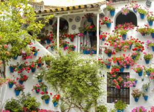 Patios ajardinados. Córdoba